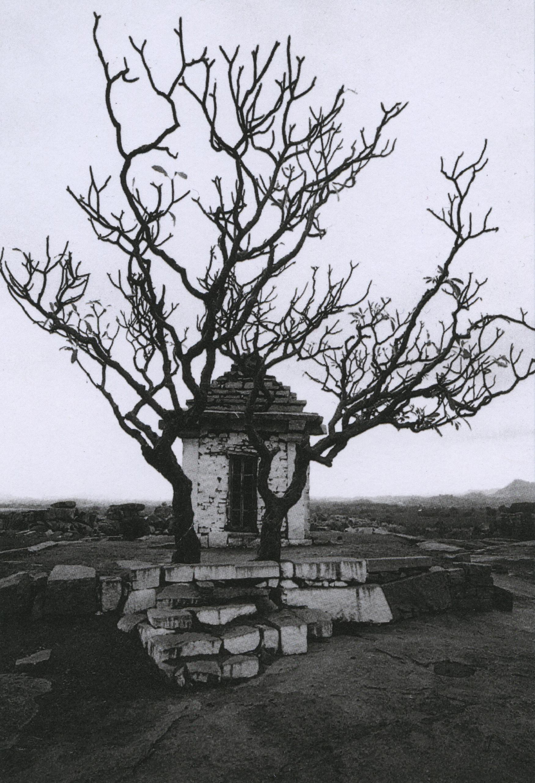 ettore sottsass_arbres_hampi, inde, 1992_p100