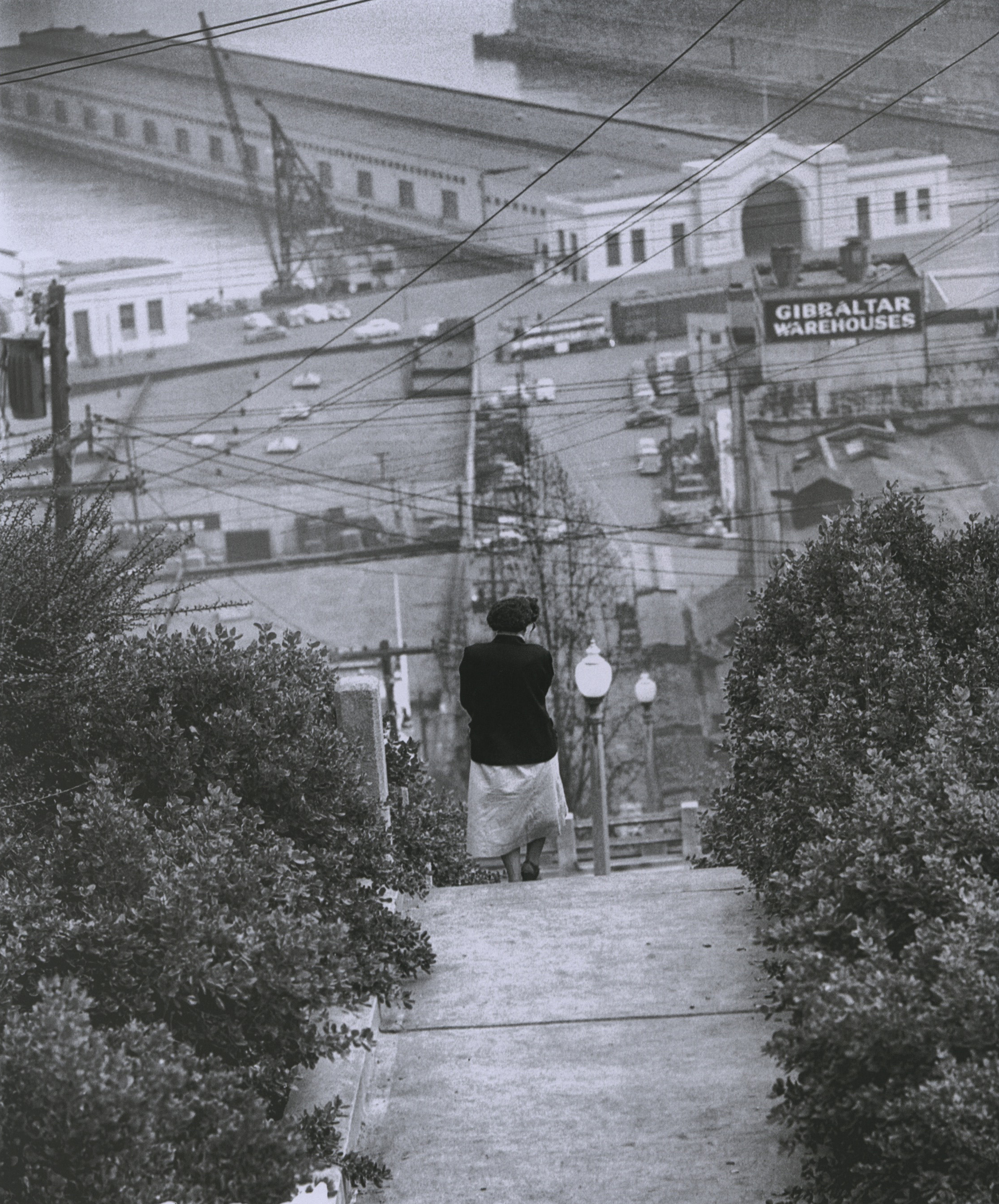 fred lyon_steep stairway from telegraph hill down to waterfront piers_p166