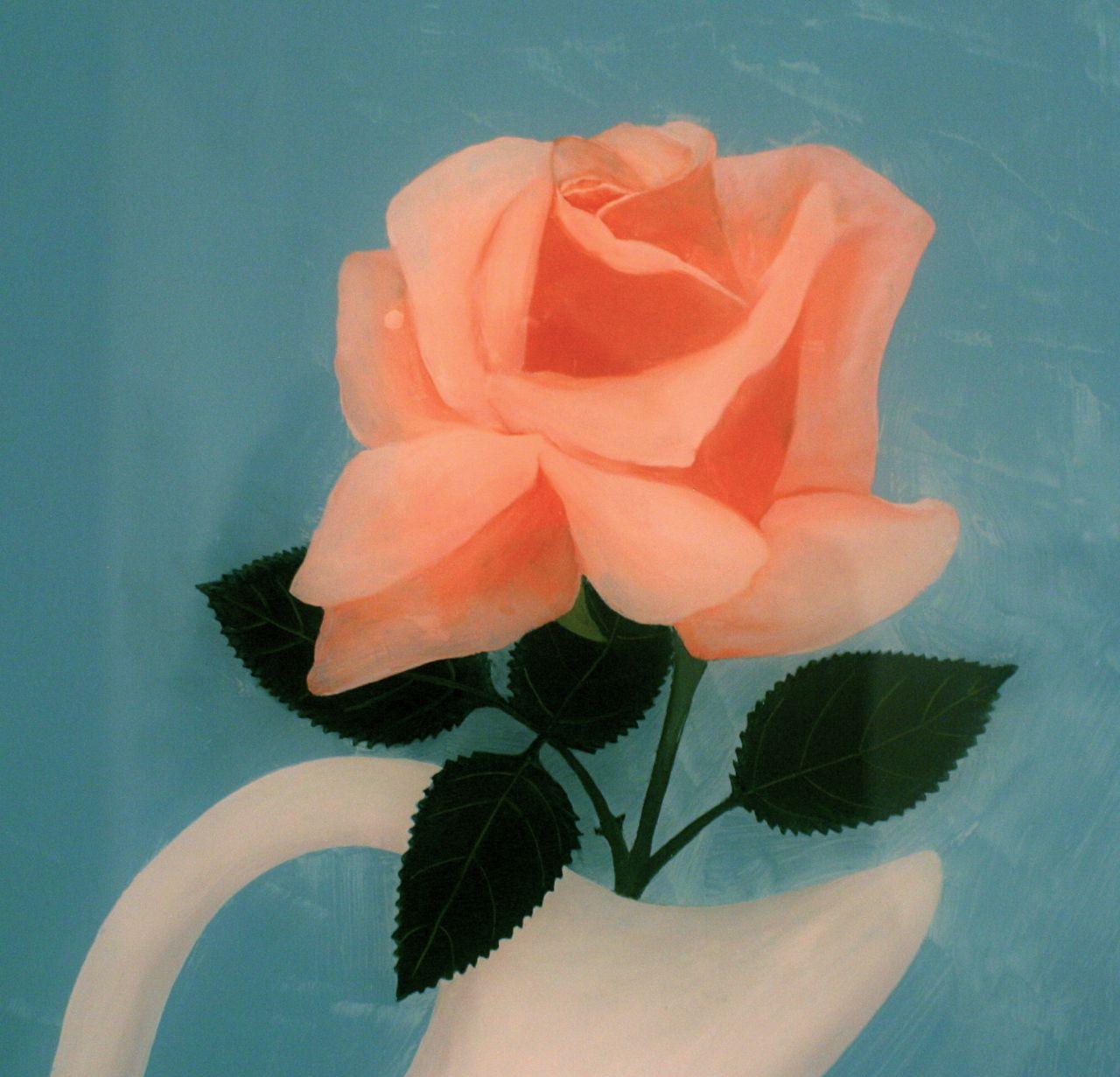 rebecca james_rose